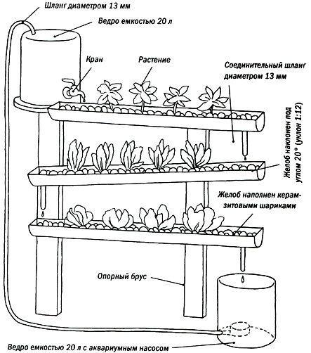 С чего сделать гидропонную установку в домашних условиях
